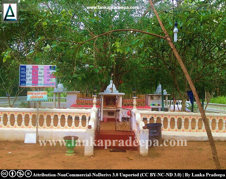 The Padiyadora Bodhi tree is believed to be one of saplings of Jaya Sri Maha Bodhiya