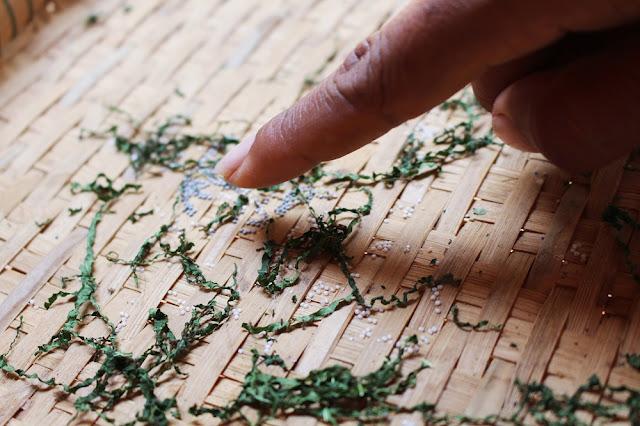 Silk worms, Phnom Penh, Cambodia - travel blog