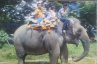 Wisata Jalan Santai Di Kebun Binatang Medan Dulu Dan Kini