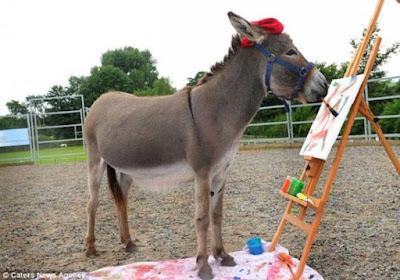 El burro pintor