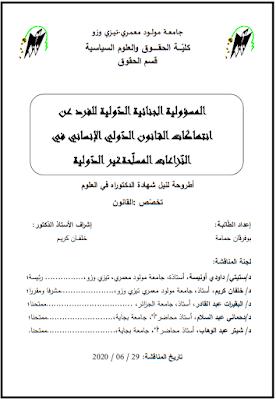 أطروحة دكتوراه: المسؤولية الجنائية الدولية للفرد عن انتهاكات القانون الدولي الإنساني في النزاعات المسلحة غير الدولية PDF