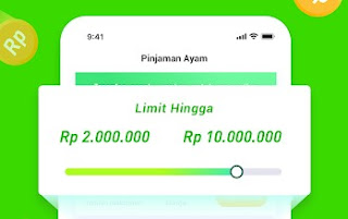pinjaman ayam pinjol online beranak