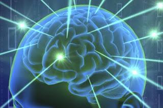 Alex Nugent a une idée derrière la tête: fabriquer des ordinateurs imitant le fonctionnement du cerveau humain. Sa startup,Knowm, a ainsi annoncé début septembre une découverte qui pourrait révolutionner ce champ de recherche récent, également investi par HP et IBM depuis quelques années.