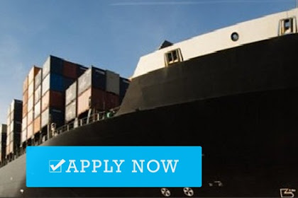 Deck Cadet For Container Vessel