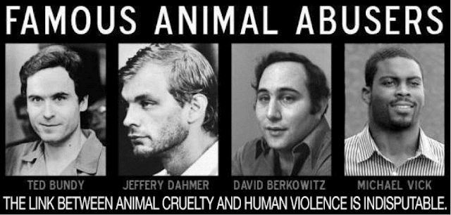 Domestic Abuse and Cruelty to Animals