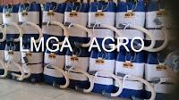 jual benih kubis, kubis Summer autumn 633, manfaat kubis, budidaya kubis, lmga agro, online shop