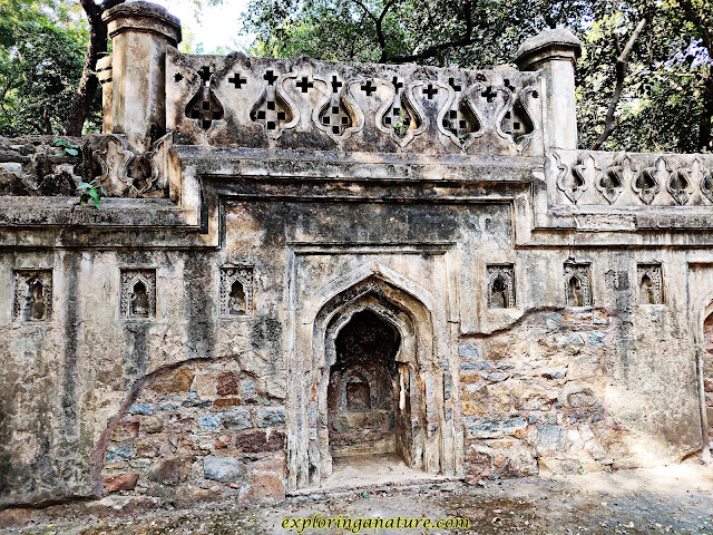 Bage Alam Ka Gumbad at Hauz Khash