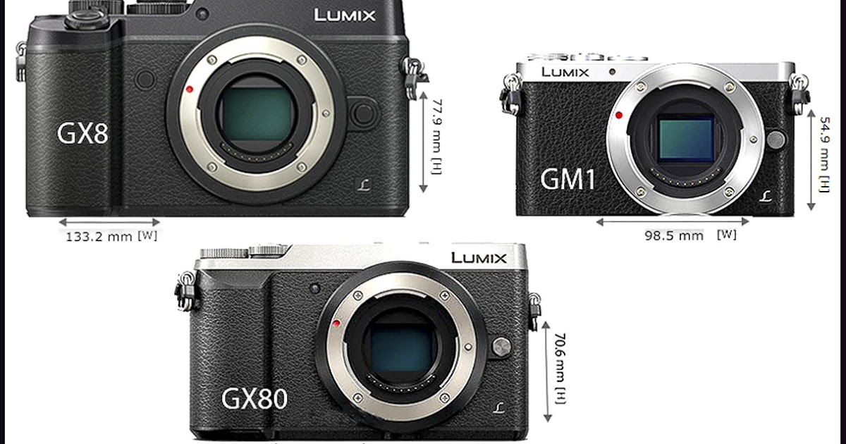 Man behind lens new lumix gx80 a smaller gx8 for Housse lumix gx80