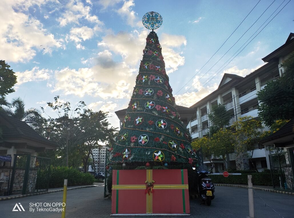 OPPO R17 Pro Main Camera Sample - Afternoon, Christmas Tree