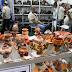 Pequenos negócios criam quase 300 mil empregos no Brasil