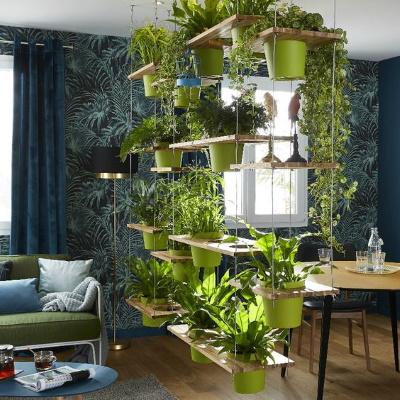 cloison végétale urban jungle