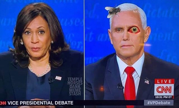 Current Vice President Mike Pence had a fly on his head and (supposedly) pinkeye during the U.S. vice presidential debate with Senator Kamala Harris on October 7, 2020.