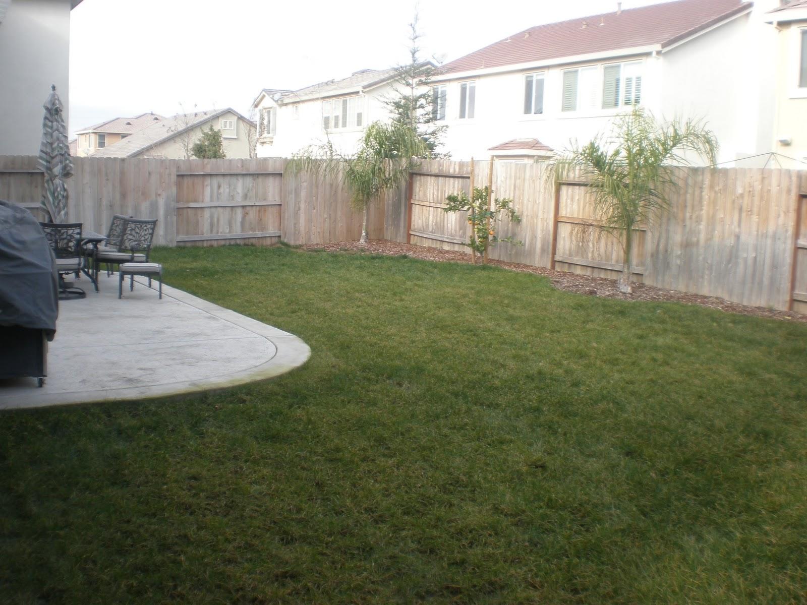 Backyard Pool in Sacramento: Inground Pool Contracting in ...