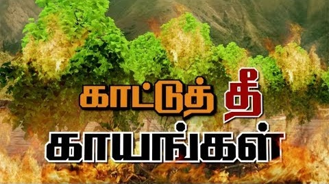 Kurangani Forest Fire: Death toll increases to 14 | #Kurangani #FireAccident #KuranganiForest