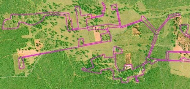 Οδηγός συμπλήρωσης της αίτησης για τακτοποίηση των δασικών αυθαιρέτων