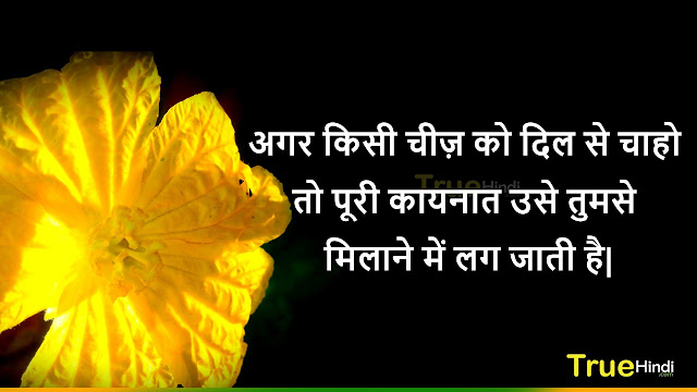 Good Morning All Images,Good Morning Images For Whatsapp In Hindi,Good Morning Images With Flowers Hd,Good Morning Images With Rose Flowers