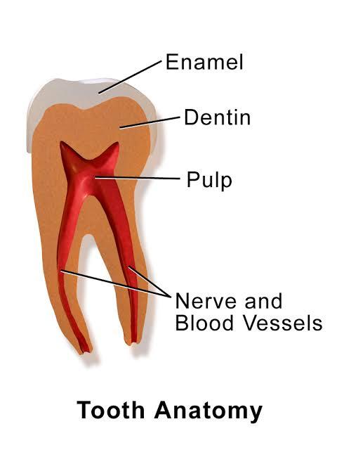 Obatnya sakit gigi apa? Tanya Jawab Dokter Endo Sadewa ...
