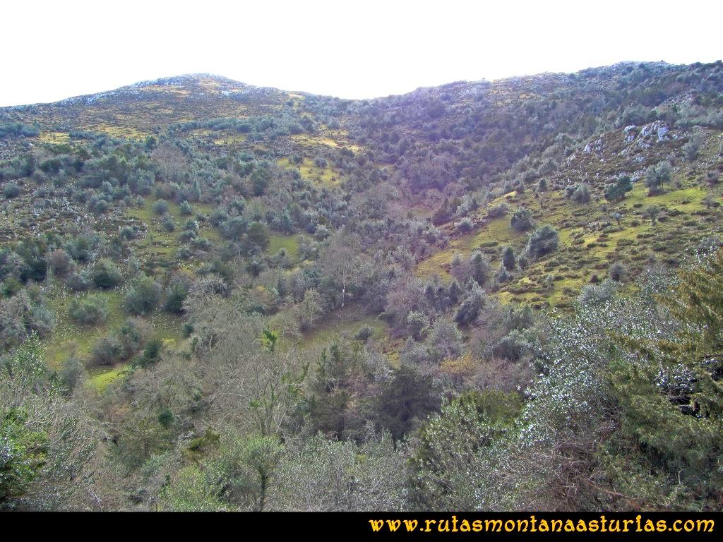 Ruta Montaña al Pienzu: Larga campera final a la cima del Pienzu
