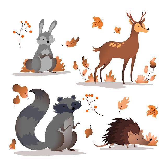 Autumn Graphics