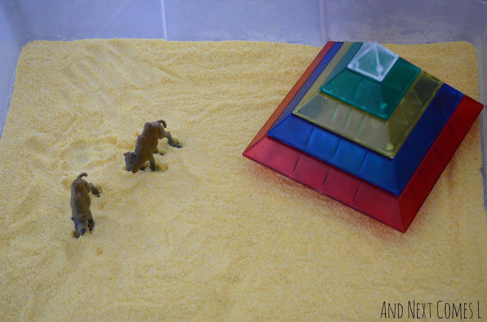 Camels and colorful pyramid in an Egyptian desert sensory bin from And Next Comes L