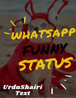 whatsappstatus funny