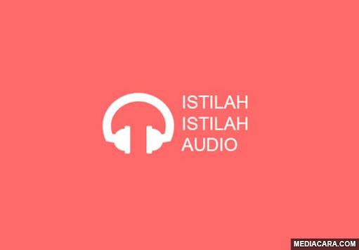 Istilah audio dan penjelasannya