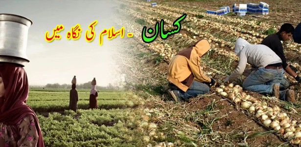 farmer-value-in-islam