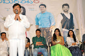 Ameerpetlo audio success meet photos-thumbnail-9