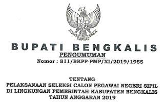 formasi CPNS kab. bengkalis Riau 2019