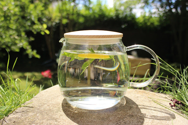 The Biggest Contribution of Making Your Own Infused Water to Humanity.