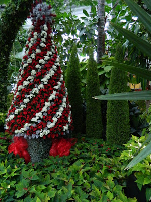 Allan Gardens Conservatory 2017 Christmas Flower Show Christmas tree by garden muses-not another Toronto gardening blog