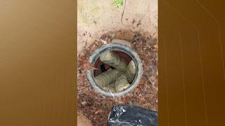 Polícia apreende 18 kg de maconha encontrada dentro de tonel, em João Pessoa