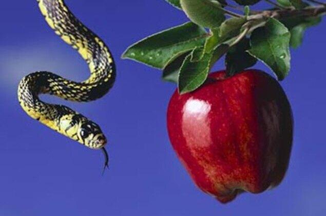 La tentación del cristiano - La serpiente en la manzana