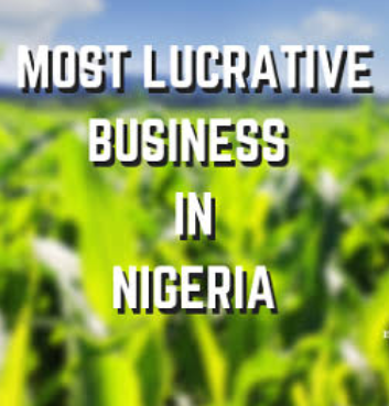 Most Lucrative Business In Nigeria 2020