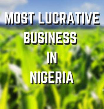 Most Lucrative Business In Nigeria 2020