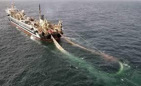 Jenis Kapal Menurut Bahan dan Alat Penggeraknya, kapal penangkap ikan