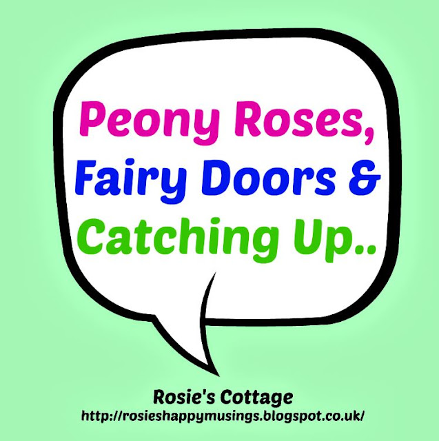 Peony Roses Fairy Doors & Catching Up