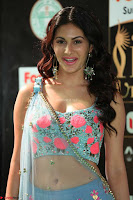 Amyra Dastur in Flower Print Choli Transparent Chunni at IIFA Utsavam Awards014.JPG