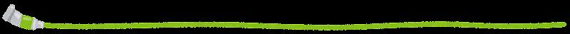 line_enogu4_green.png (800×48)