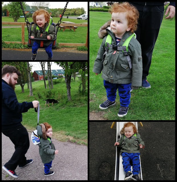 Collage of photos of Mini from Grafham Water