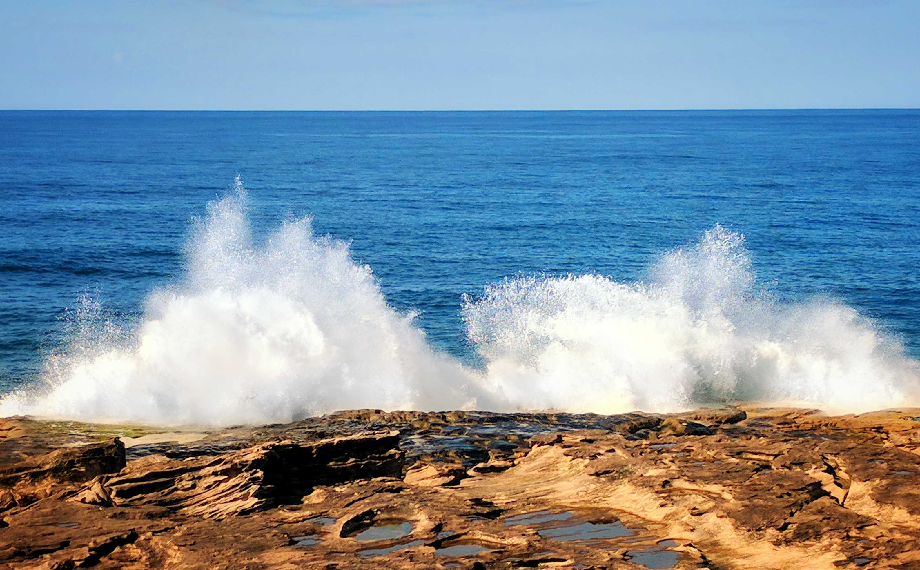Ocean wave hits the rocks of South Curl Curl (Sydney)