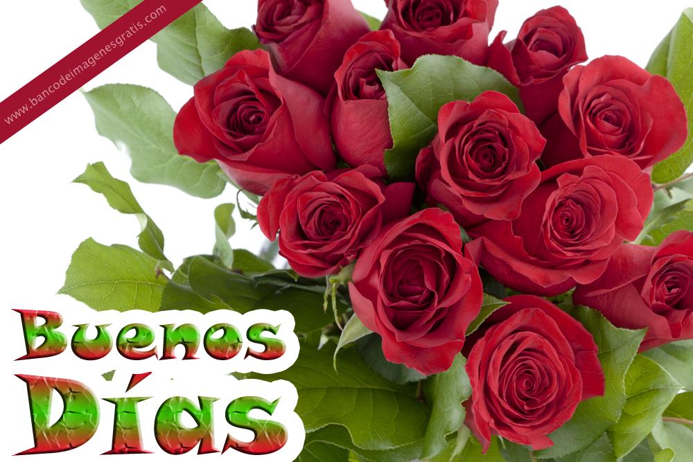 Unique Wallpaper: Rosas Rojas Con Nombres De Personas Y