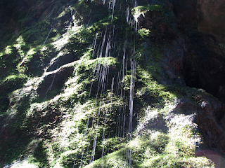 Spring water from gorge in Rio Viejo, Puriscal
