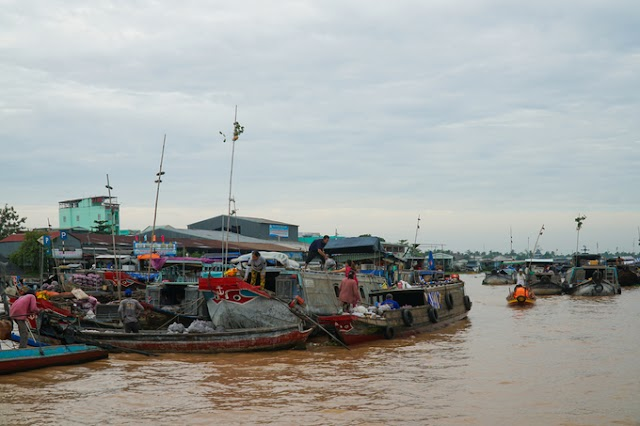 Weekend check-in at the floating market, rows of palm tree