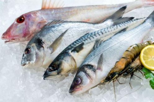 ikan segar untuk sushi atau sashim