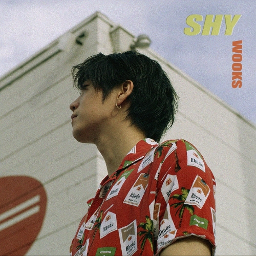Wooks – Shy (Feat. Artinb) – Single