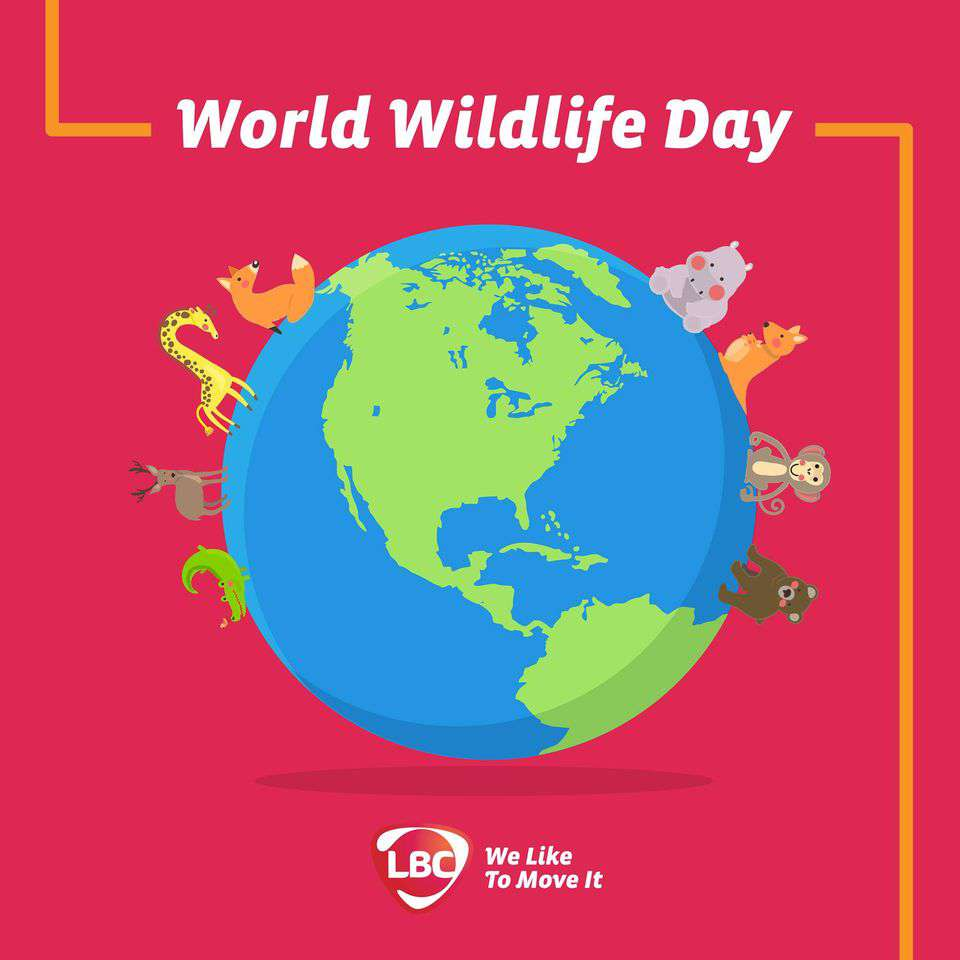 World Wildlife Day Wishes Awesome Picture
