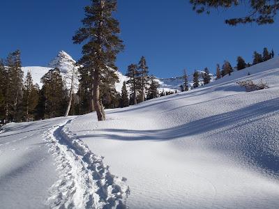 Pear Lake Ski Backpack Snowshoe Sequoia National Park