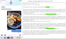 this image contains screenshots of a chat session in iMessage on the left, with messages sent between two participants. They appear to be discussing their dinner, which is a plate of Aelpermagronen. On the right we can see an interactive session using the sqlite3 tool to dump the messages table from sms.db uploaded by the implant. It clearly contains the plain-text of the messages sent by both participants.