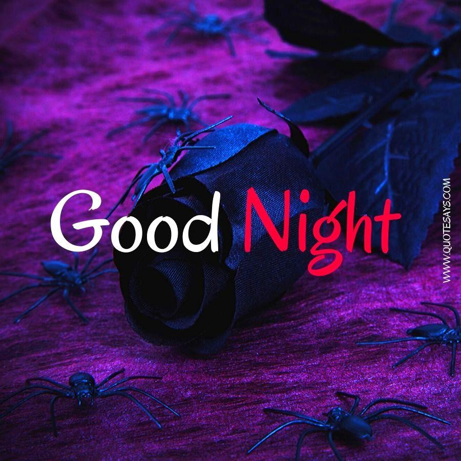 Good Night Violare Flower